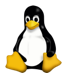 How to run an application on Linux from the terminal